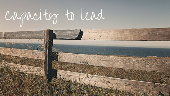 Capacity to lead